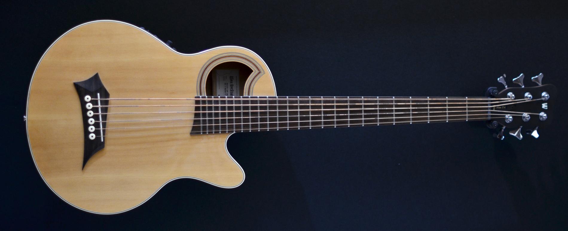 Warwick Rockbass Alien Standard Acoustic